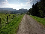 Road to Linhope - Cheviot Hills